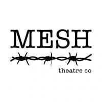 Meshtheatreco